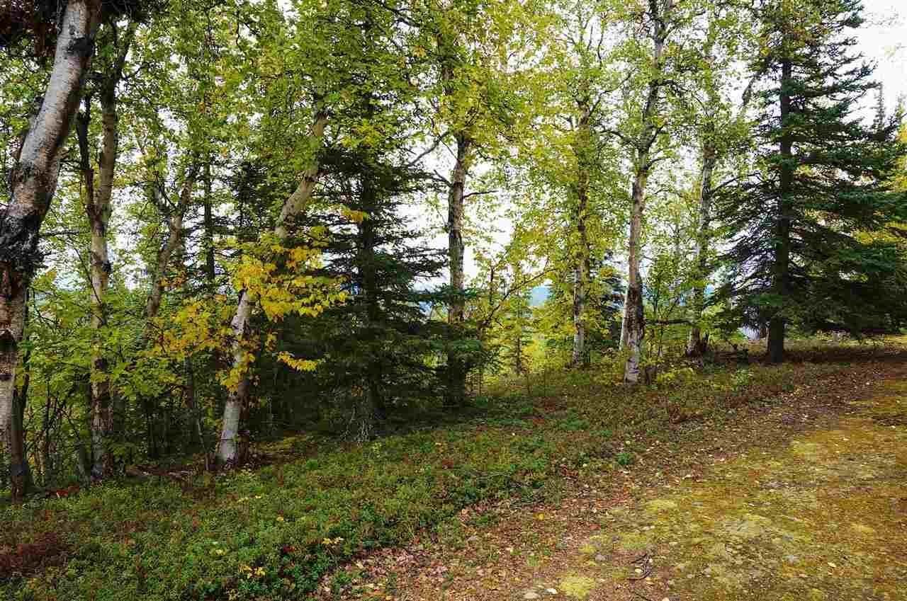 Land for Sale at Lot 2 RIDGETOP CABINS ROAD Healy, Alaska 99743 United States