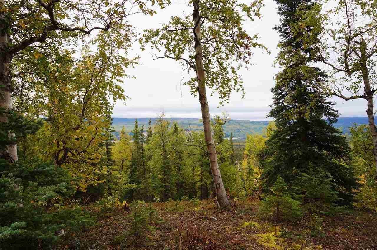 Land for Sale at Lot 6 RIDGETOP CABINS ROAD Healy, Alaska 99743 United States
