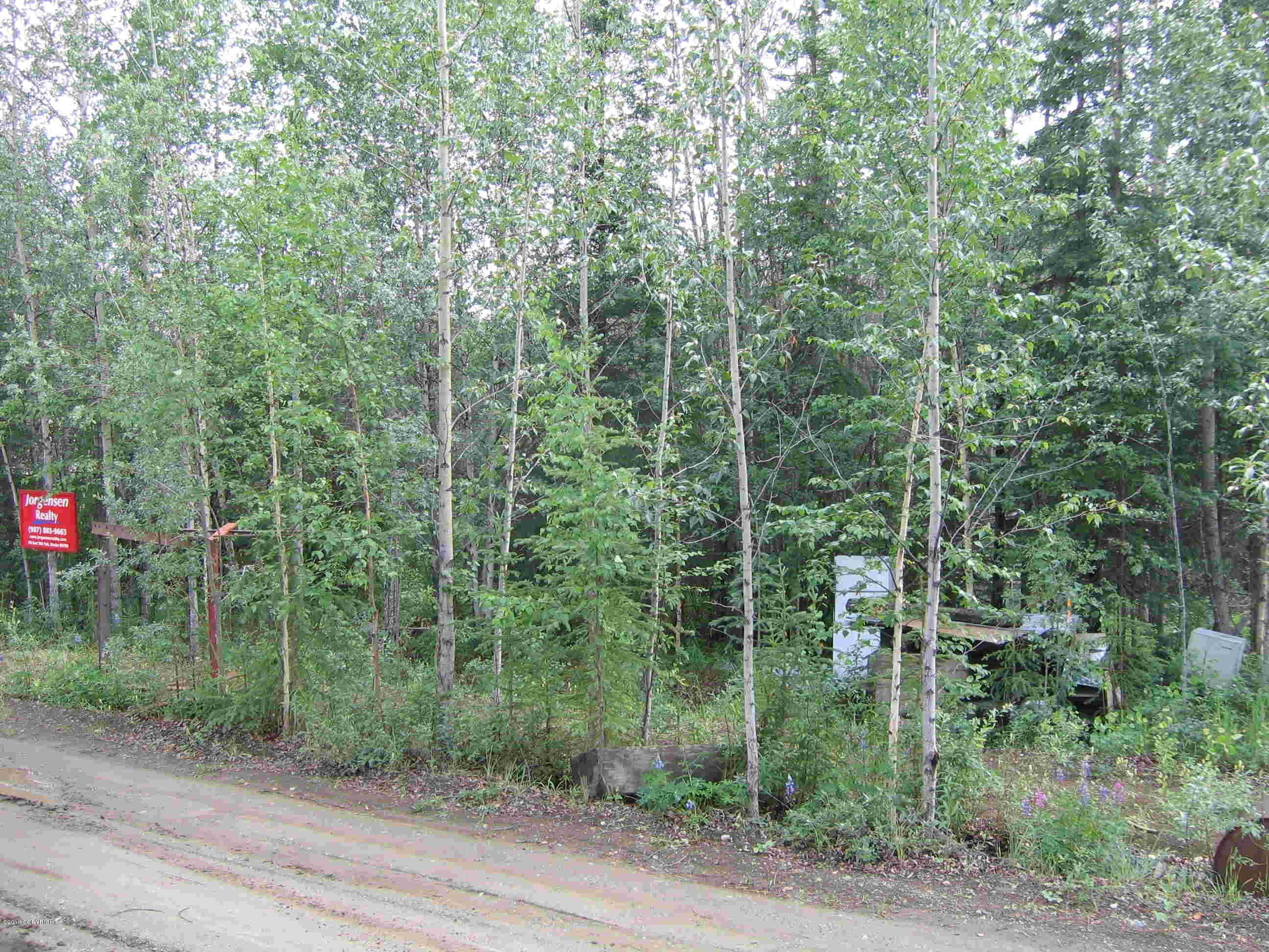 Land for Sale at Eagle, Alaska United States