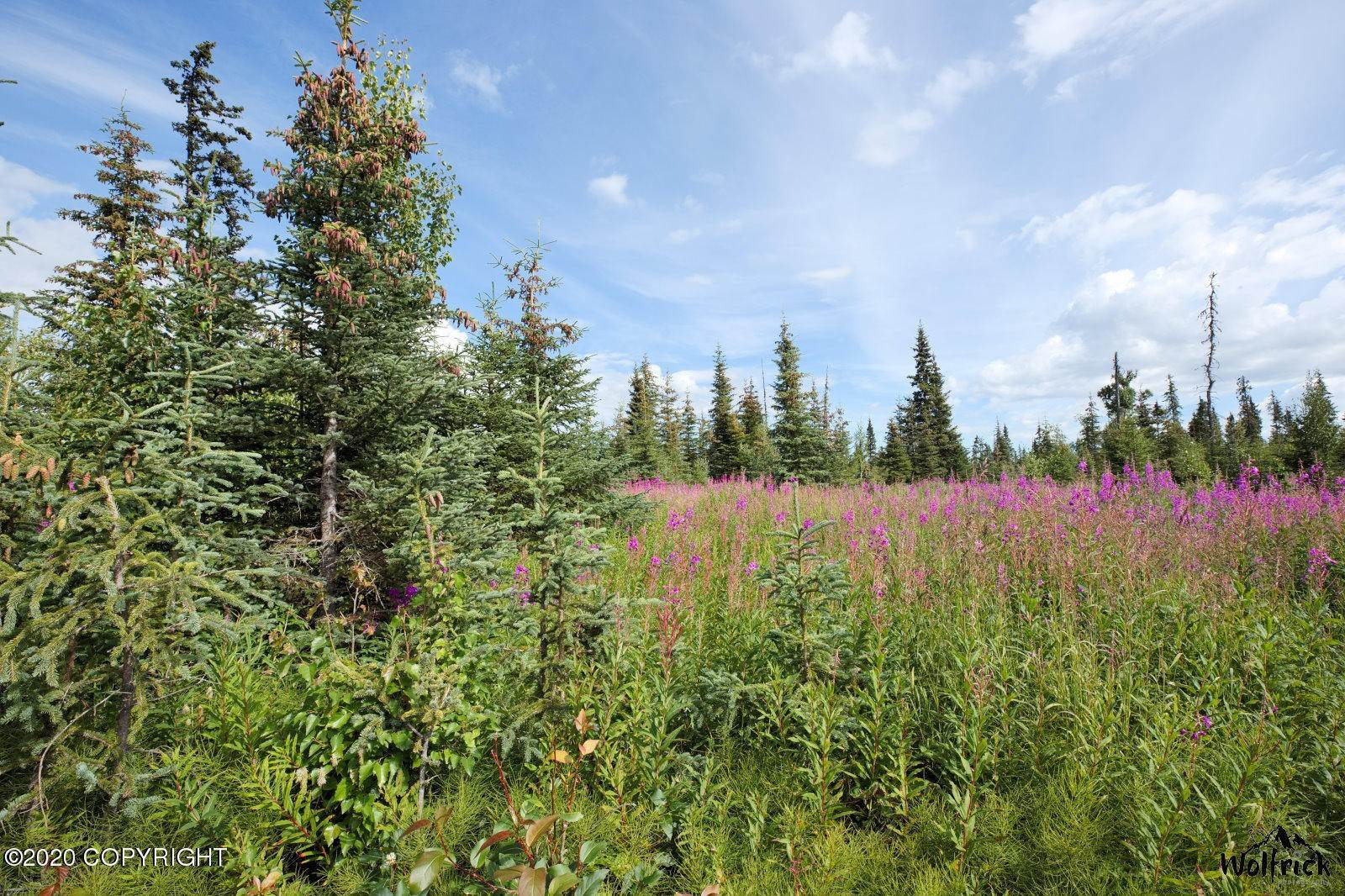 Land for Sale at Other Areas, Alaska United States