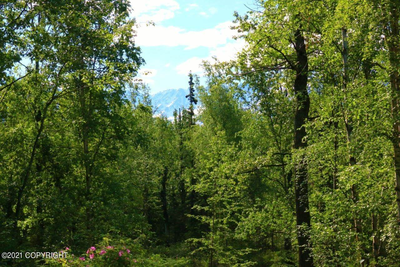 Land for Sale at Sutton, Alaska United States