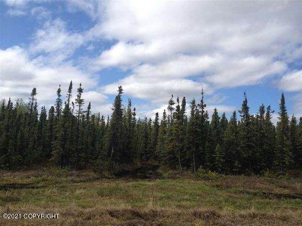 Land for Sale at Clear, Alaska United States