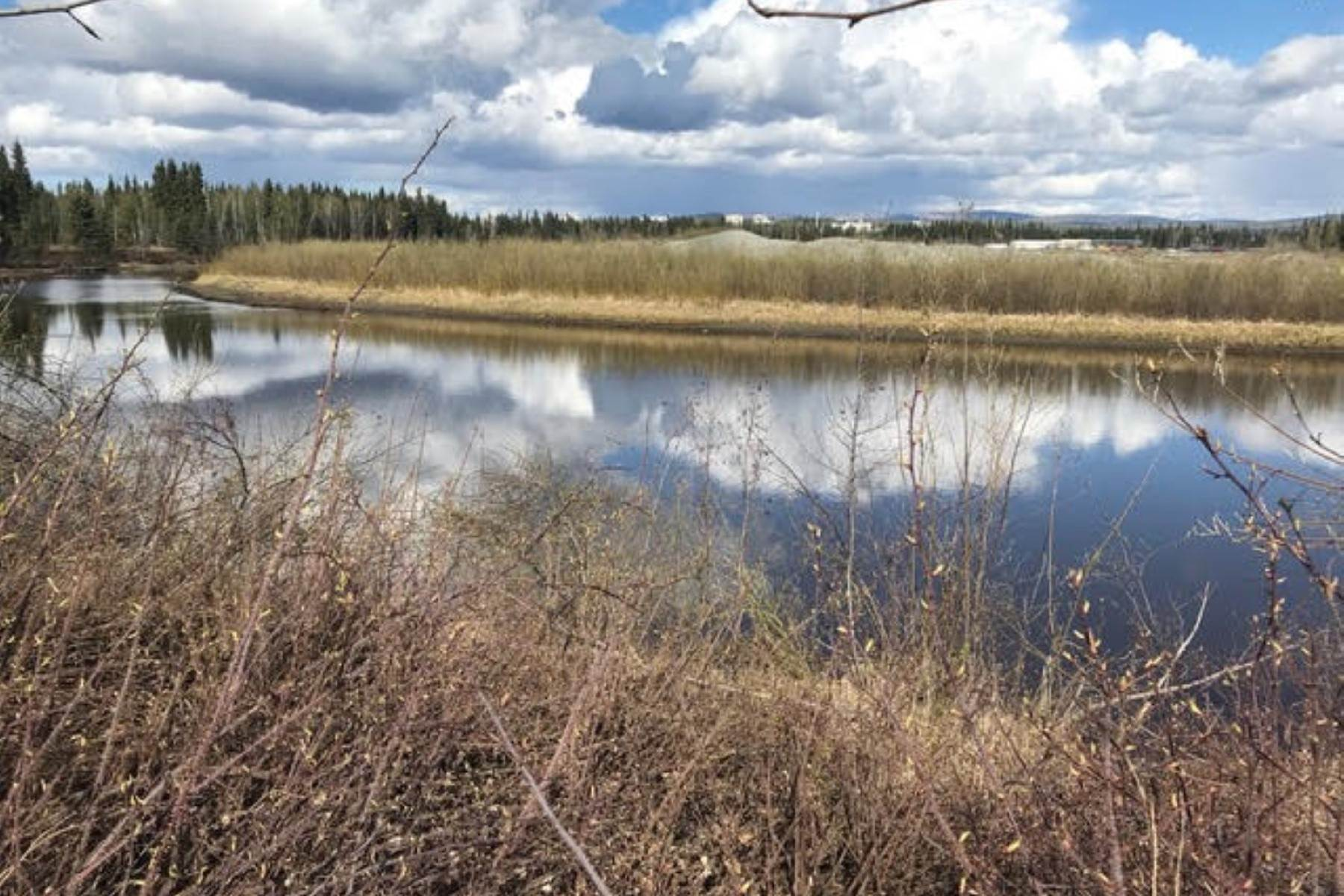 4. Land for Sale at NHN CHENA RIVER Fairbanks, Alaska 99701 United States