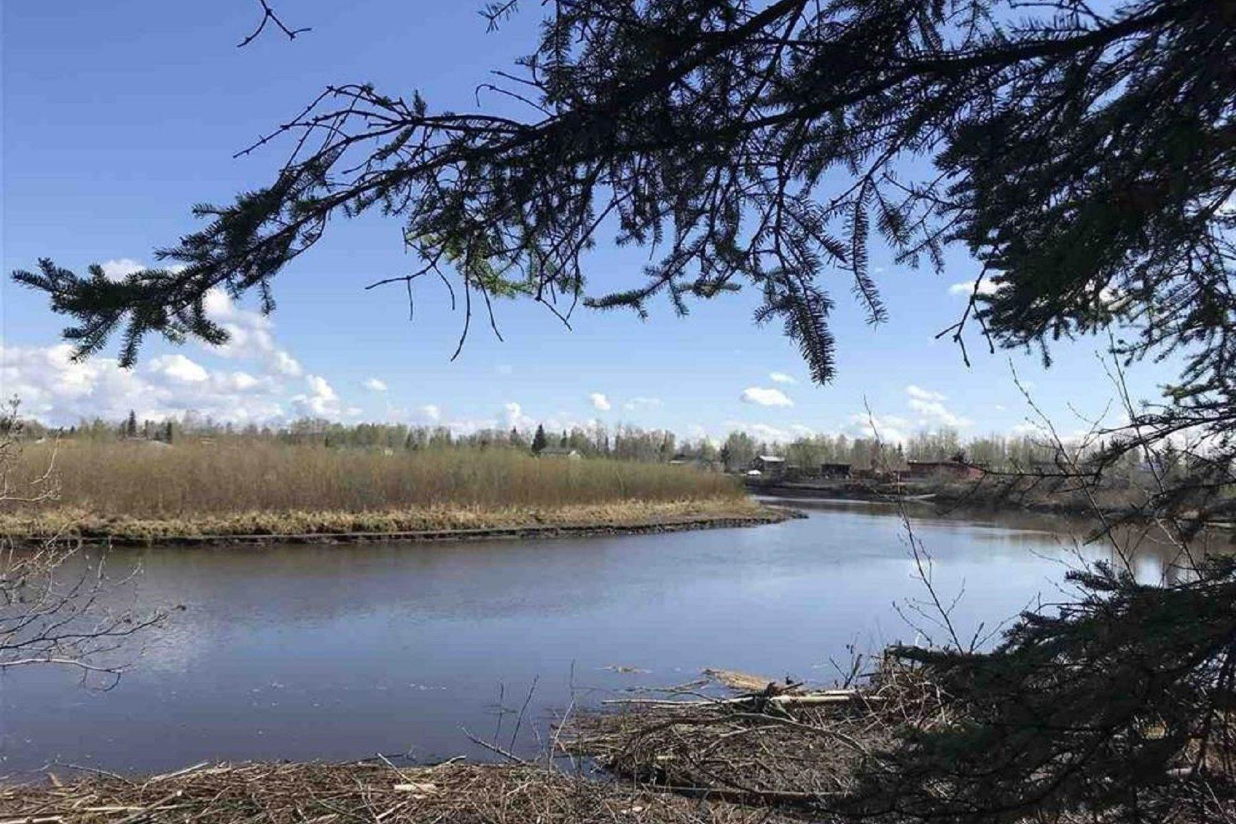 2. Land for Sale at NHN CHENA RIVER Fairbanks, Alaska 99701 United States