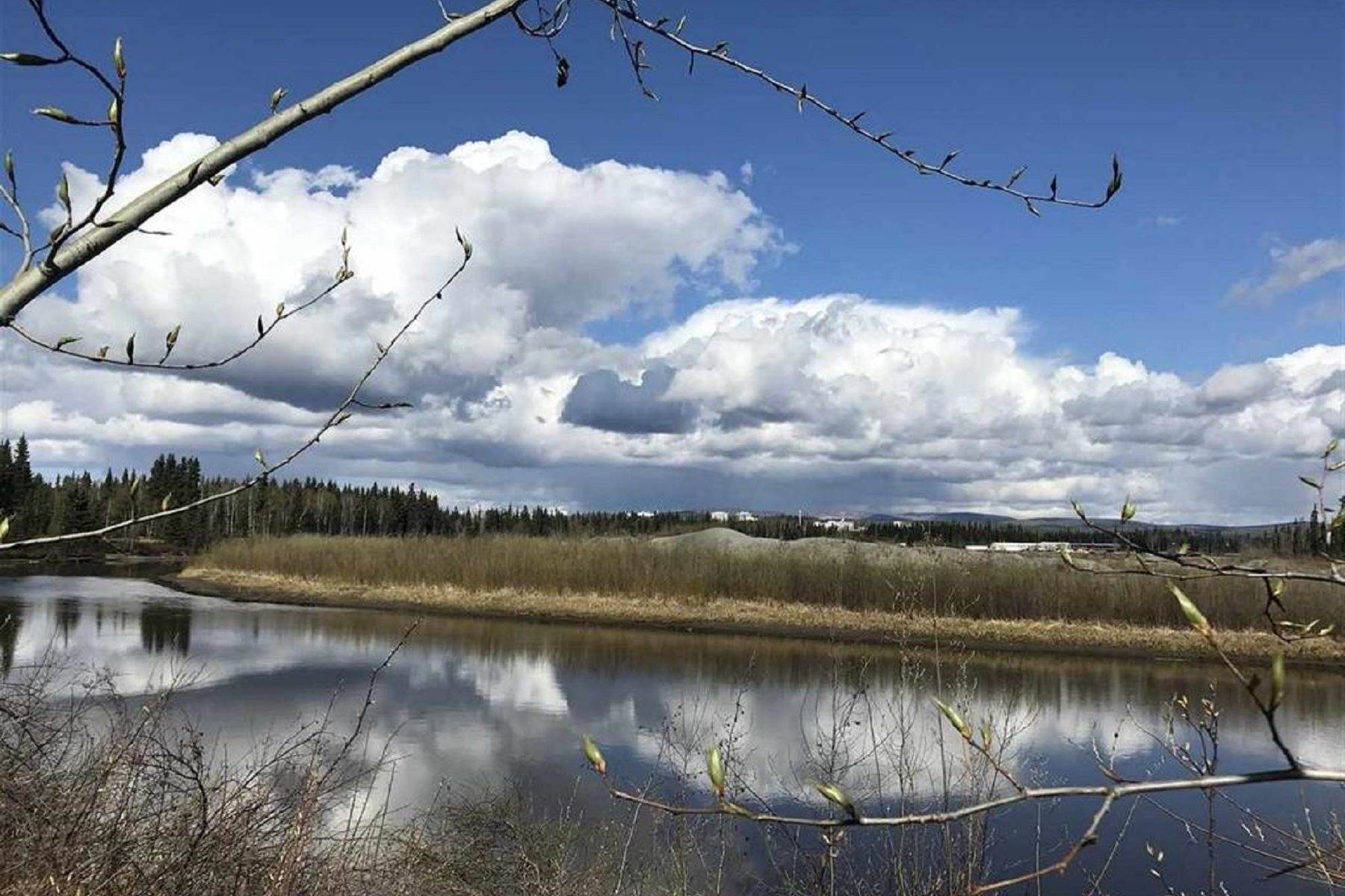 Land for Sale at NHN CHENA RIVER Fairbanks, Alaska 99701 United States
